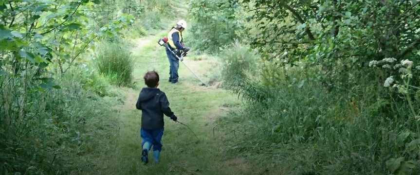 The Cove Woodland Trust