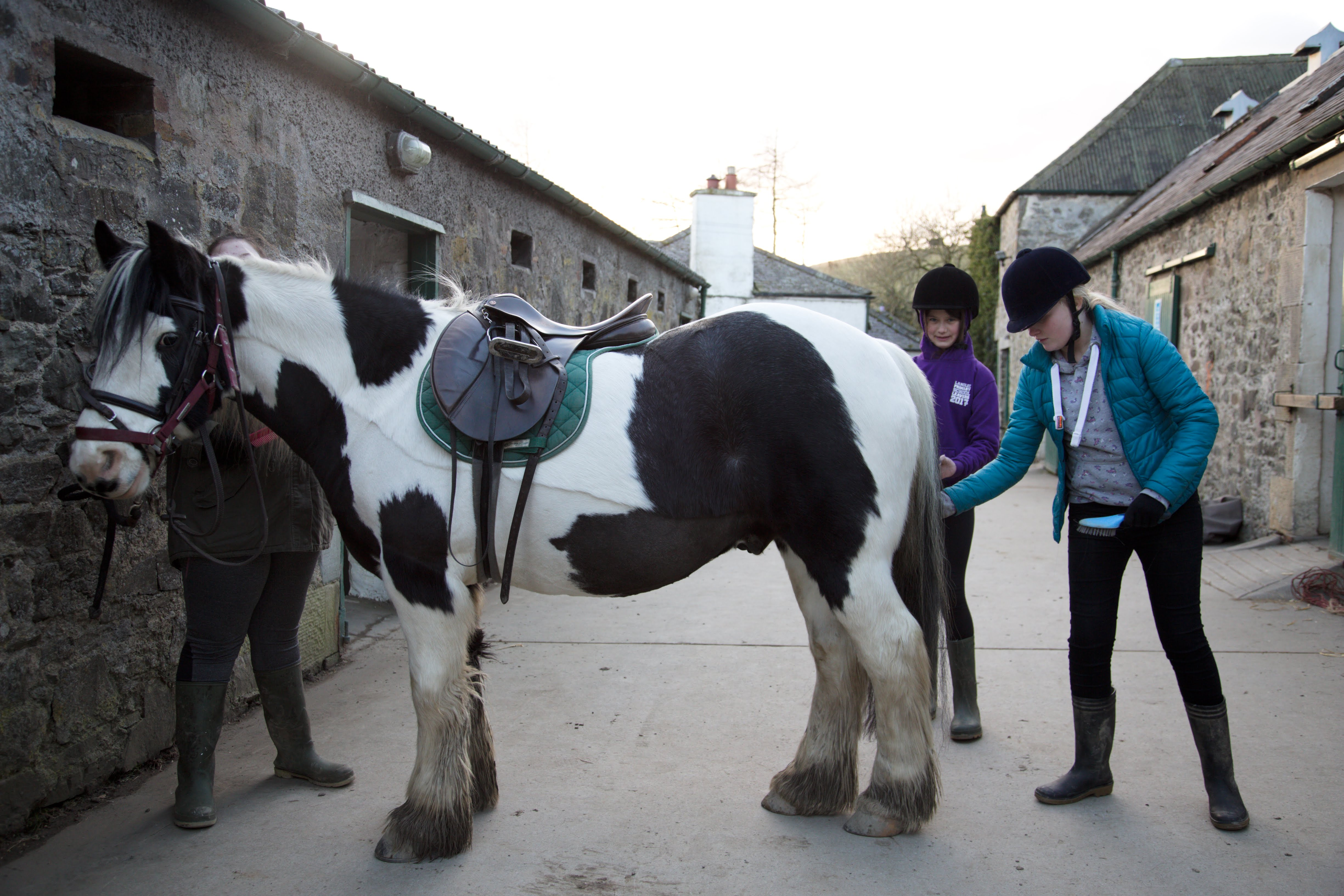 Two young people looking after a horse as part of Stable Life's programme