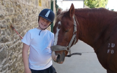 STABLE LIFE: Working together to make a difference