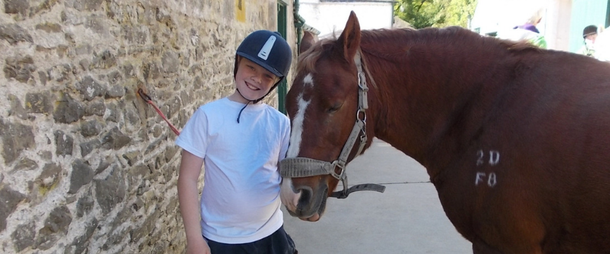 A child holding a horse's reins