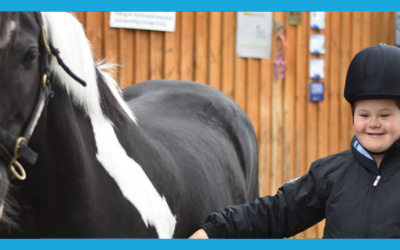 #InspirationMonday: Save Our Stables